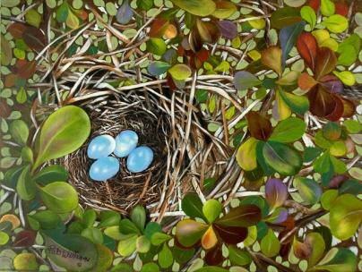 Cat Bird's Nest