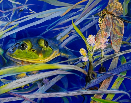 Frog Pond in 3-D